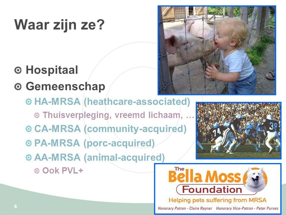 Waar zijn ze Hospitaal Gemeenschap HA-MRSA (heathcare-associated)