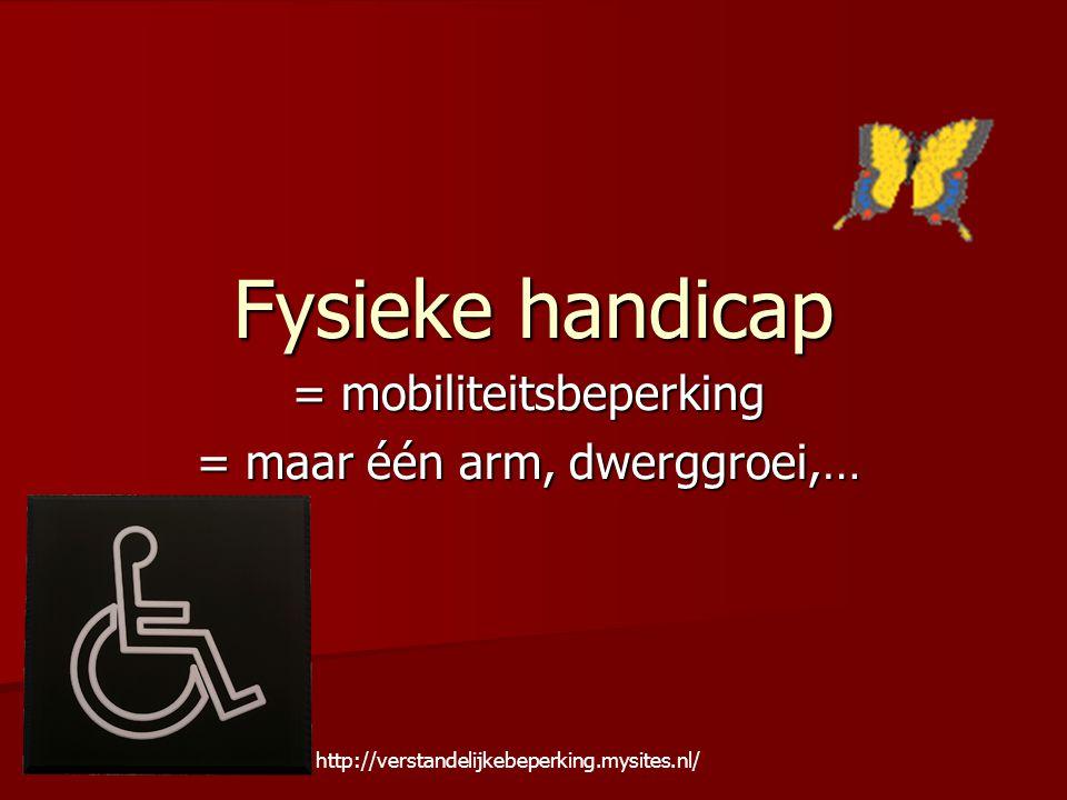 = mobiliteitsbeperking = maar één arm, dwerggroei,…