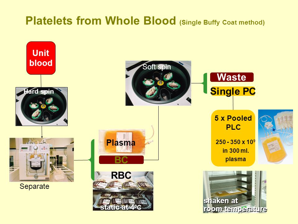 Platelets from Whole Blood (Single Buffy Coat method)