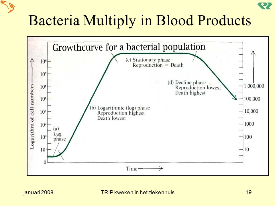 Bacteria Multiply in Blood Products