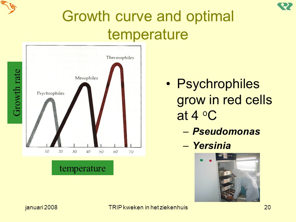 Growth curve and optimal temperature