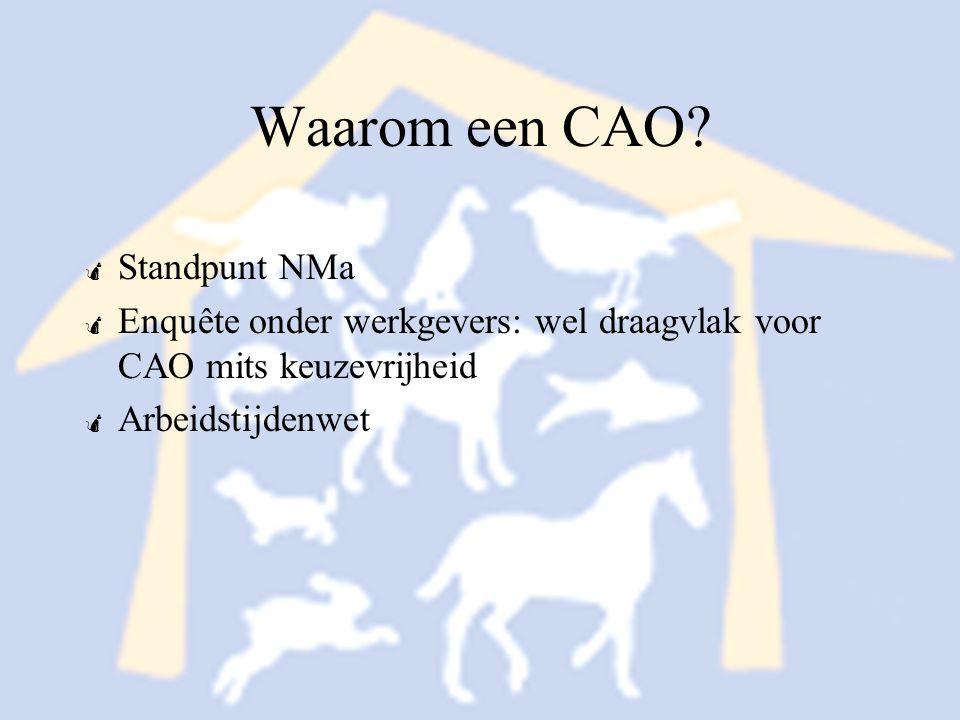 Waarom een CAO Standpunt NMa