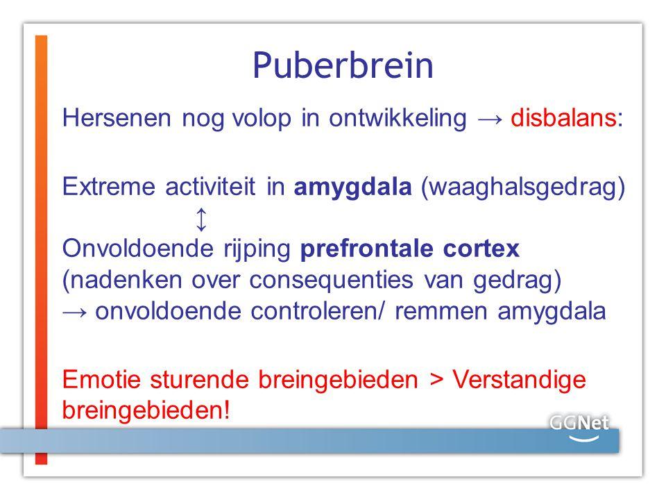 Puberbrein Hersenen nog volop in ontwikkeling → disbalans: