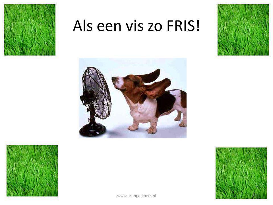 Als een vis zo FRIS! www.bronpartners.nl