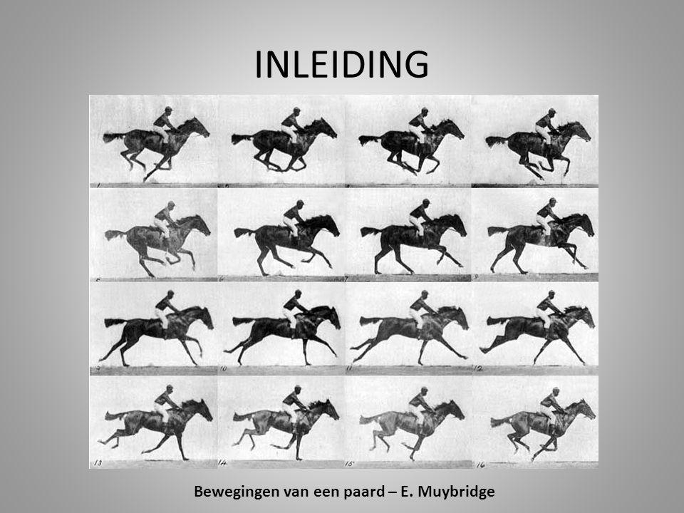 Bewegingen van een paard – E. Muybridge