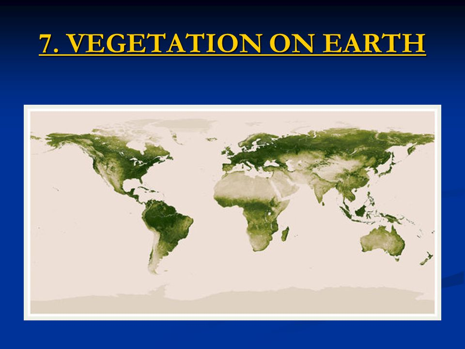 7. VEGETATION ON EARTH