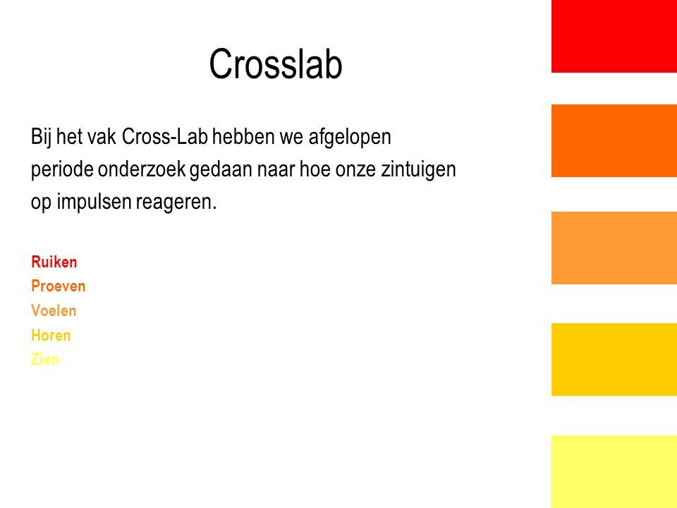 Crosslab Bij het vak Cross-Lab hebben we afgelopen