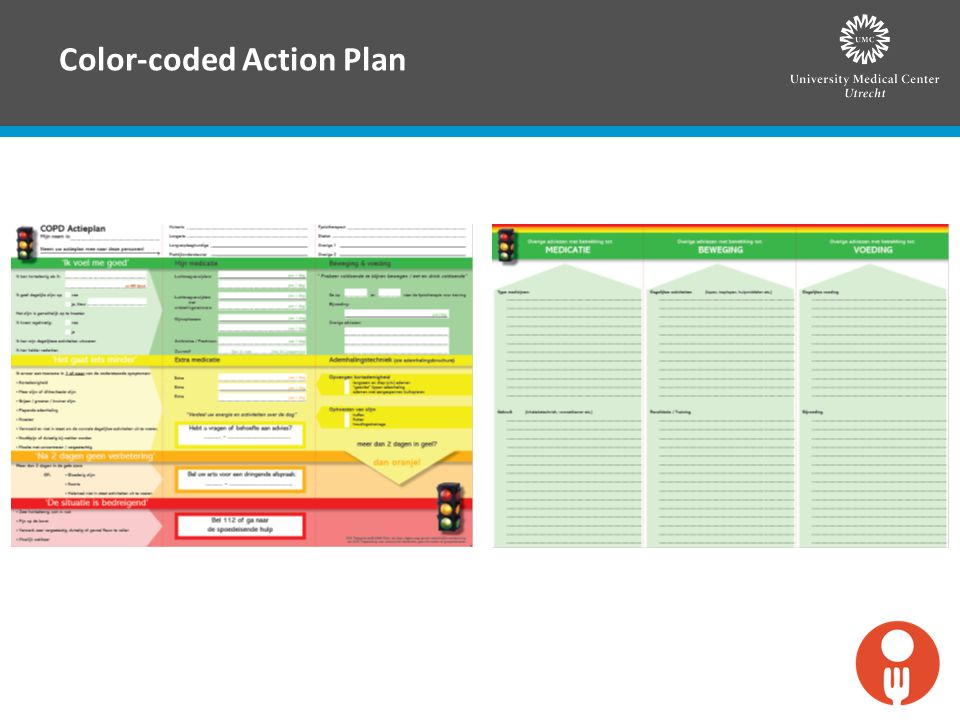 Color-coded Action Plan