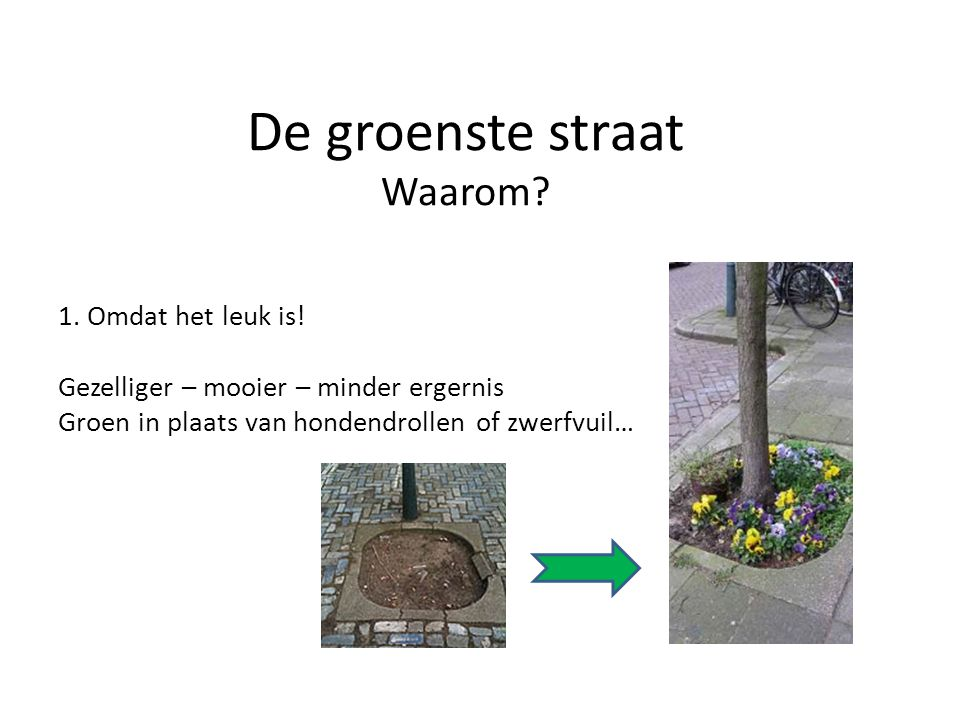 De groenste straat Waarom