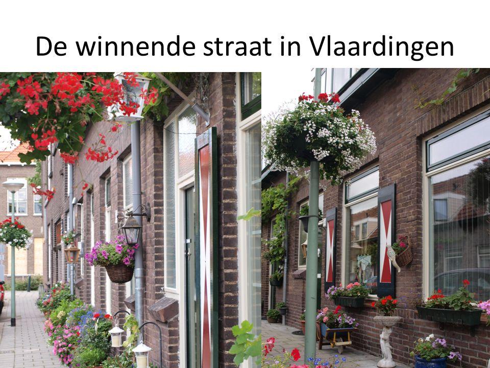 De winnende straat in Vlaardingen