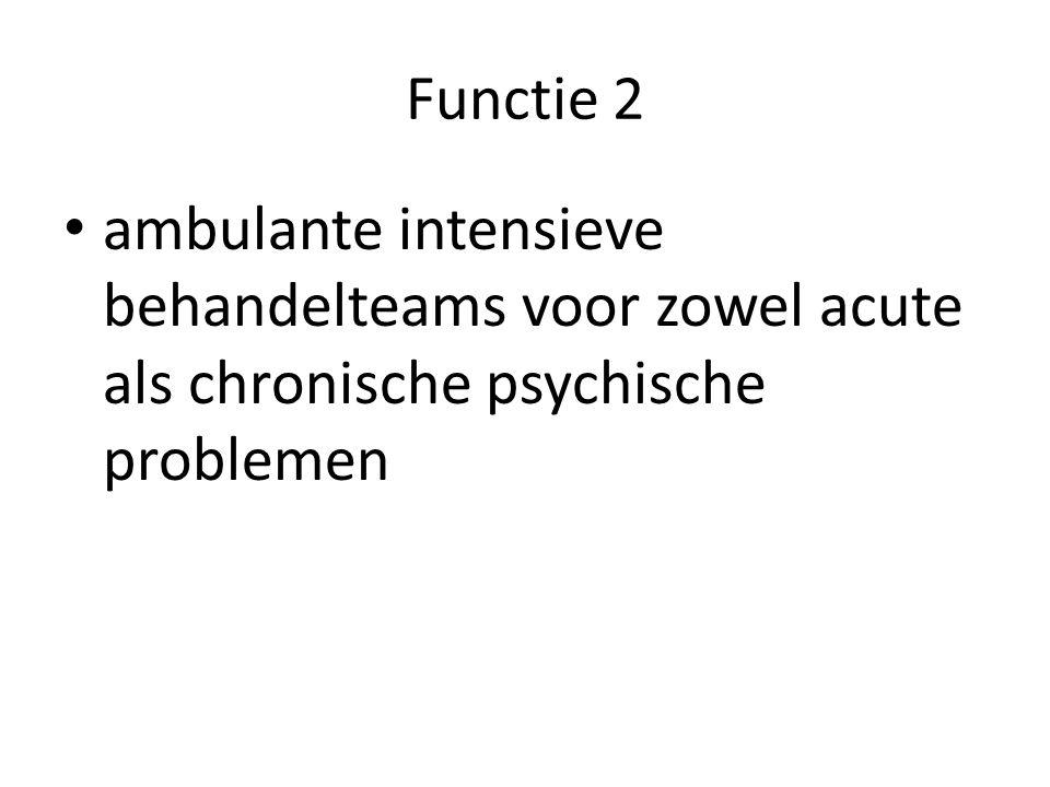 Functie 2 ambulante intensieve behandelteams voor zowel acute als chronische psychische problemen
