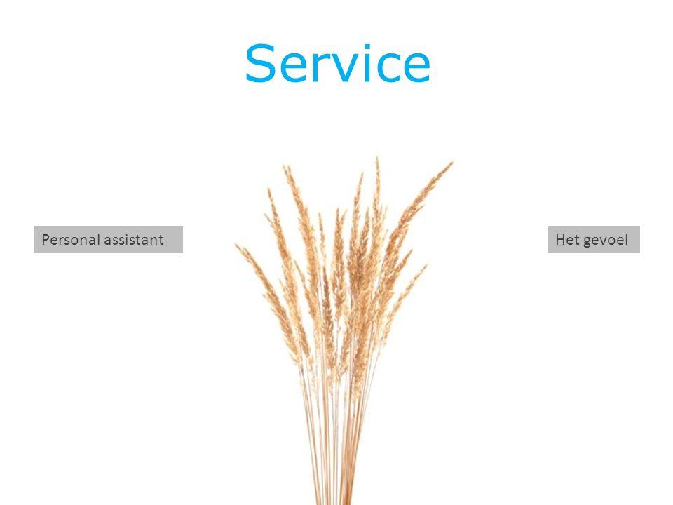 Service Personal assistant Het gevoel