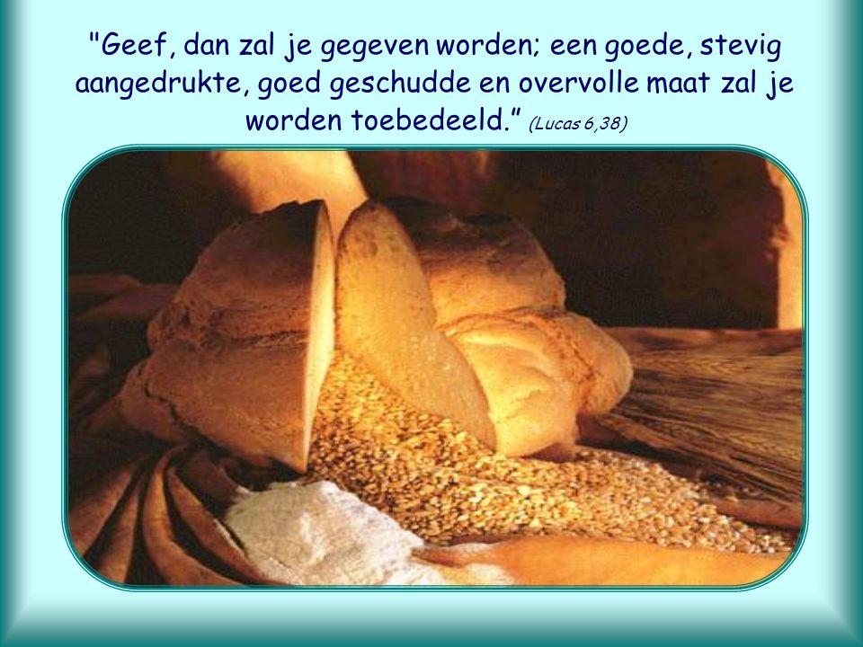 Geef, dan zal je gegeven worden; een goede, stevig aangedrukte, goed geschudde en overvolle maat zal je worden toebedeeld. (Lucas 6,38)