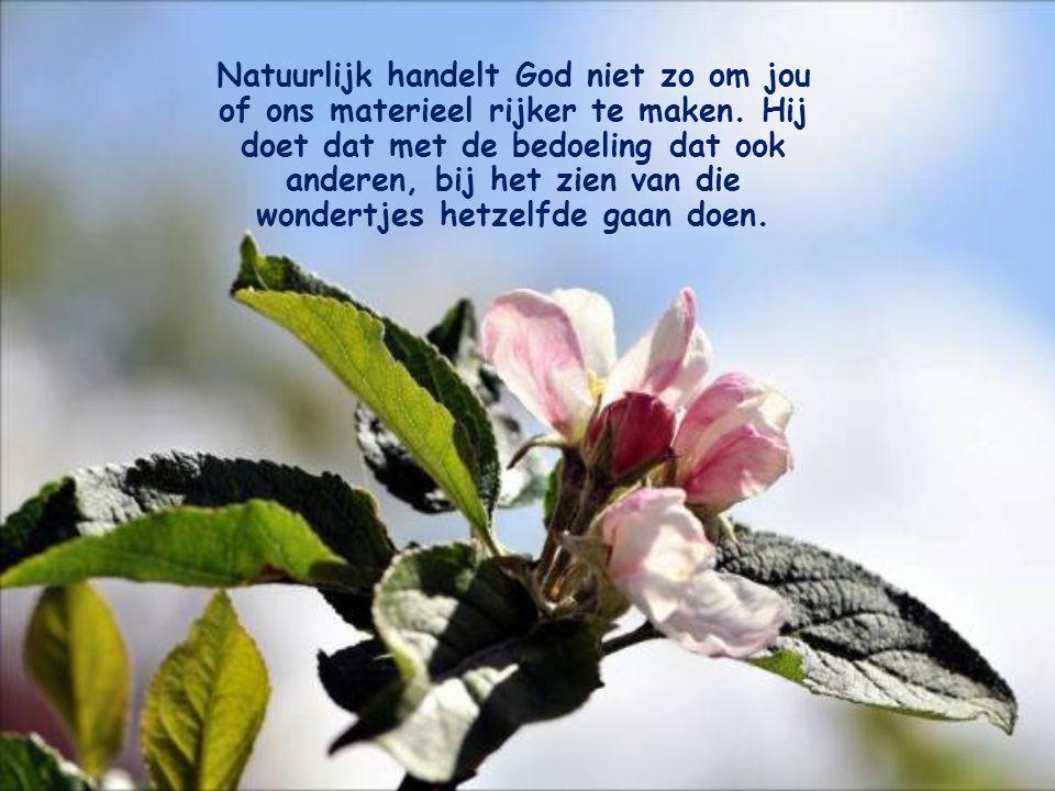 Natuurlijk handelt God niet zo om jou of ons materieel rijker te maken