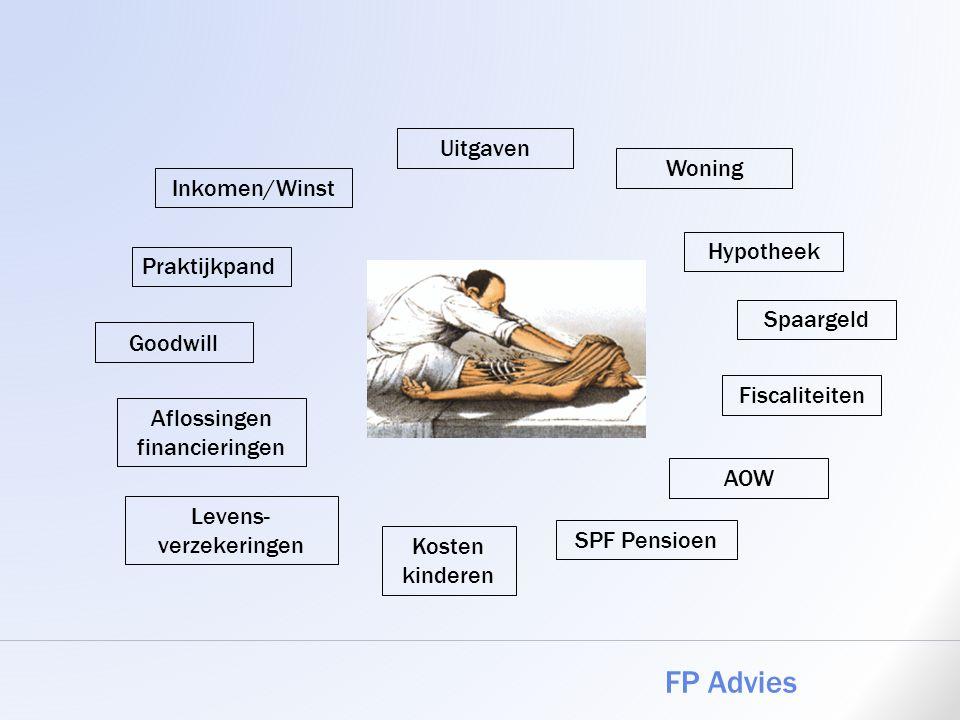 FP Advies Uitgaven Woning Inkomen/Winst Hypotheek Praktijkpand
