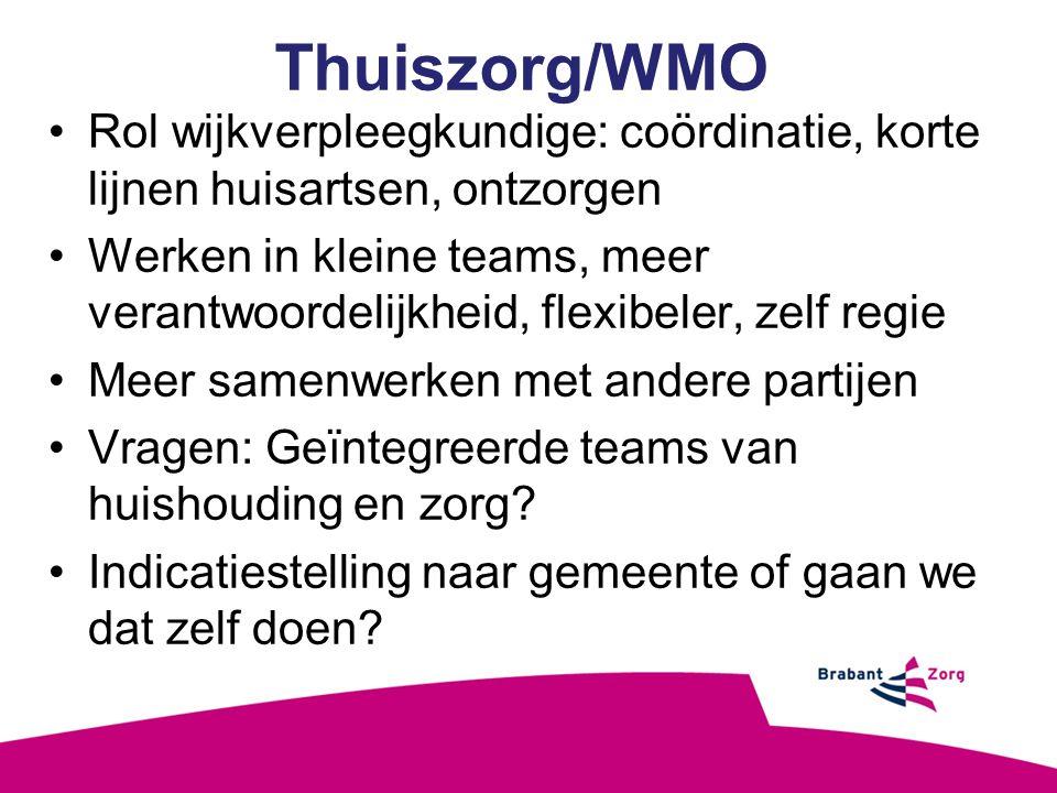 Thuiszorg/WMO Rol wijkverpleegkundige: coördinatie, korte lijnen huisartsen, ontzorgen.