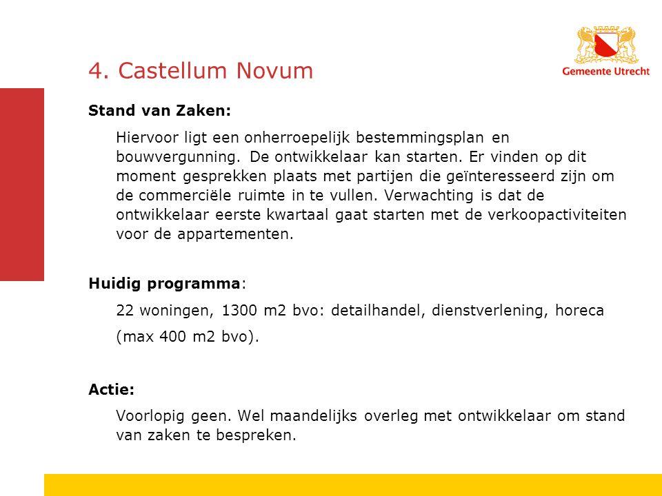4. Castellum Novum Stand van Zaken: