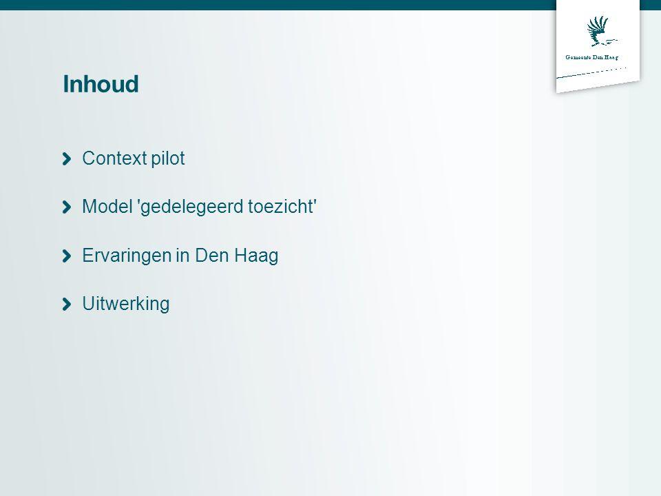 Inhoud Context pilot Model gedelegeerd toezicht