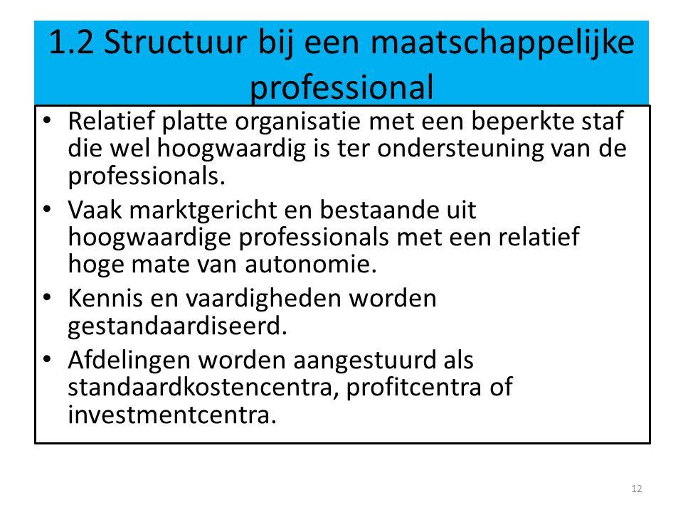 1.2 Structuur bij een maatschappelijke professional