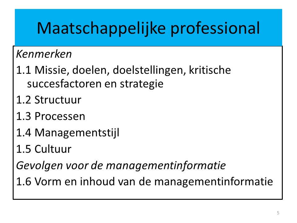 Maatschappelijke professional