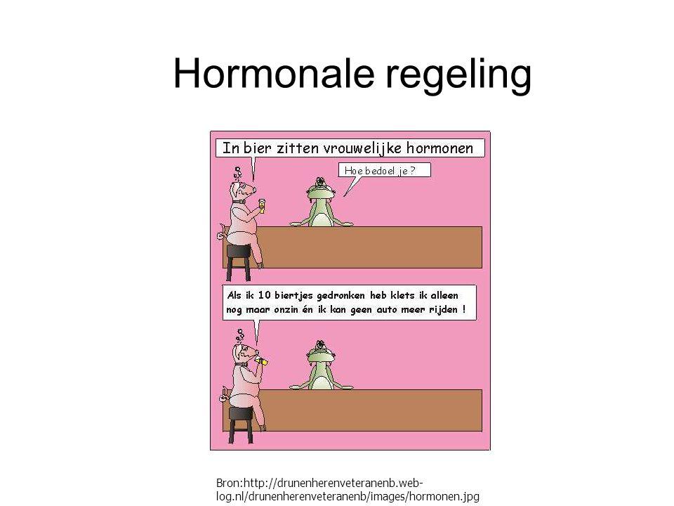 Hormonale regeling Bron:http://drunenherenveteranenb.web-log.nl/drunenherenveteranenb/images/hormonen.jpg.