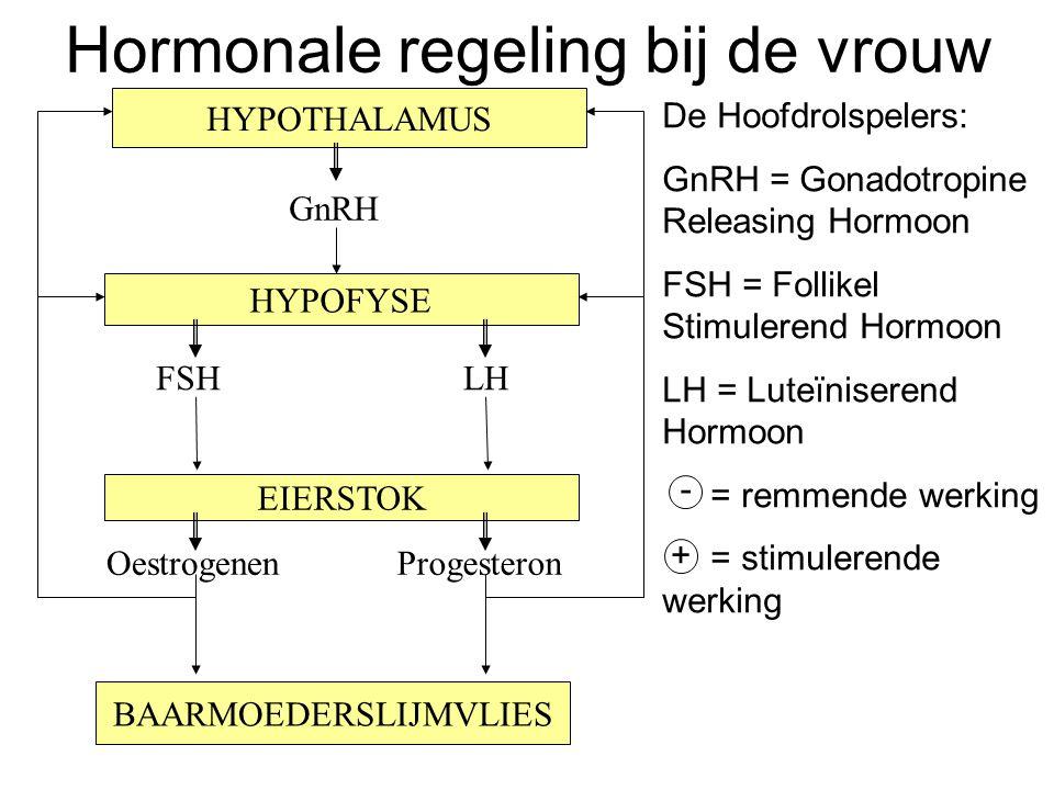 Hormonale regeling bij de vrouw