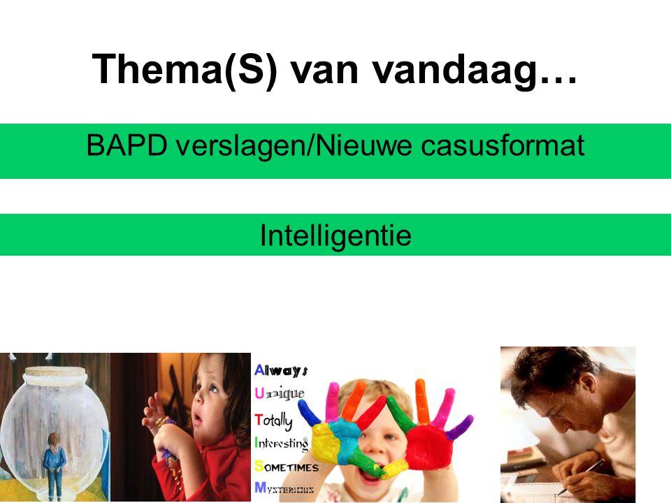 BAPD verslagen/Nieuwe casusformat