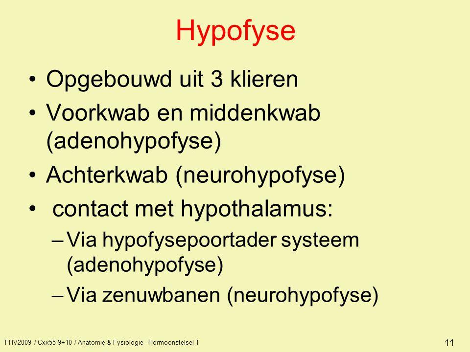 Hypofyse Opgebouwd uit 3 klieren