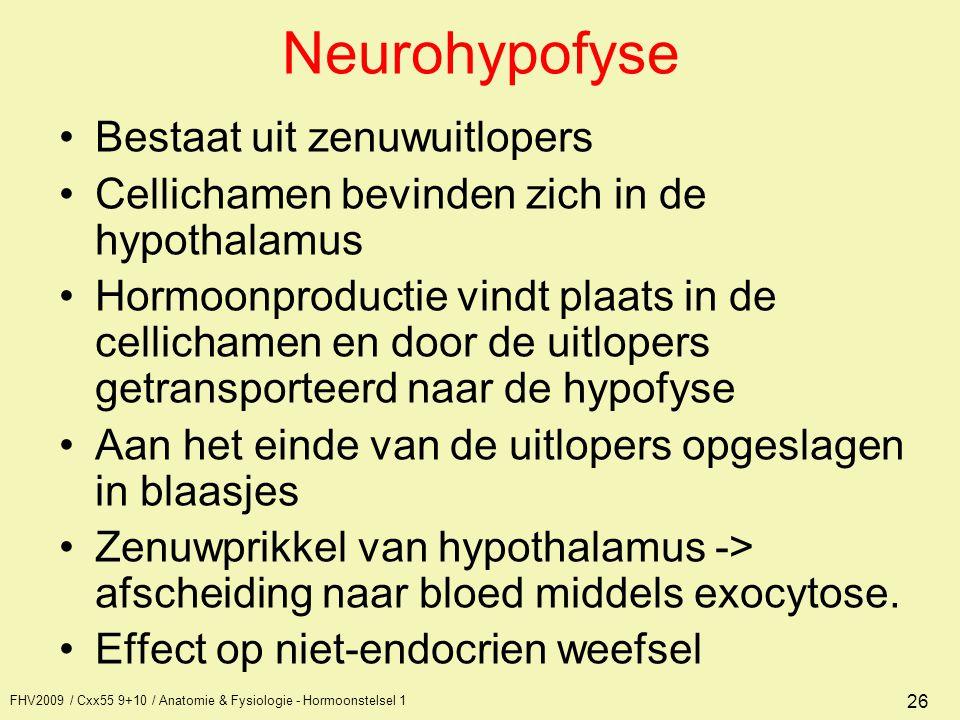 Neurohypofyse Bestaat uit zenuwuitlopers