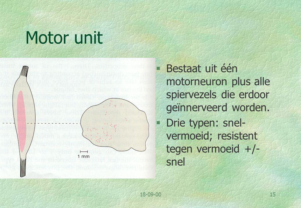Motor unit Bestaat uit één motorneuron plus alle spiervezels die erdoor geïnnerveerd worden.