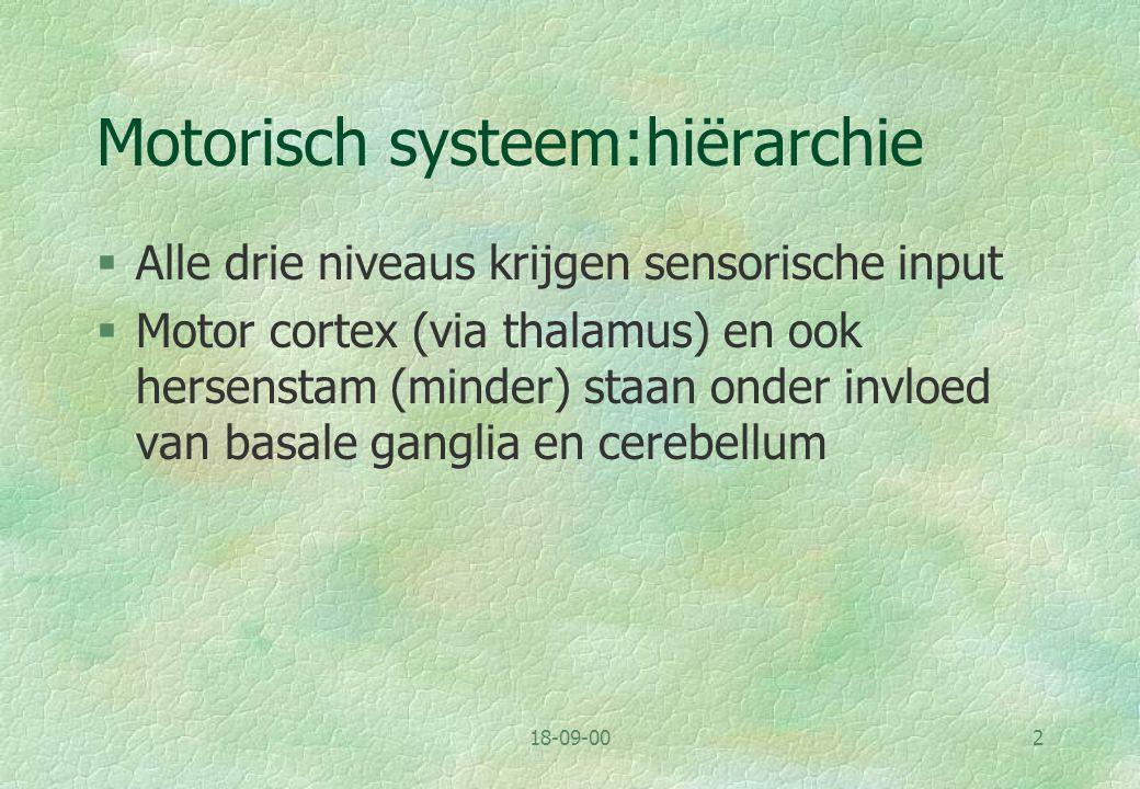 Motorisch systeem:hiërarchie