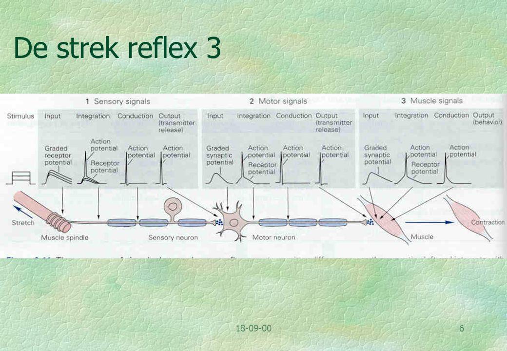 De strek reflex 3 18-09-00