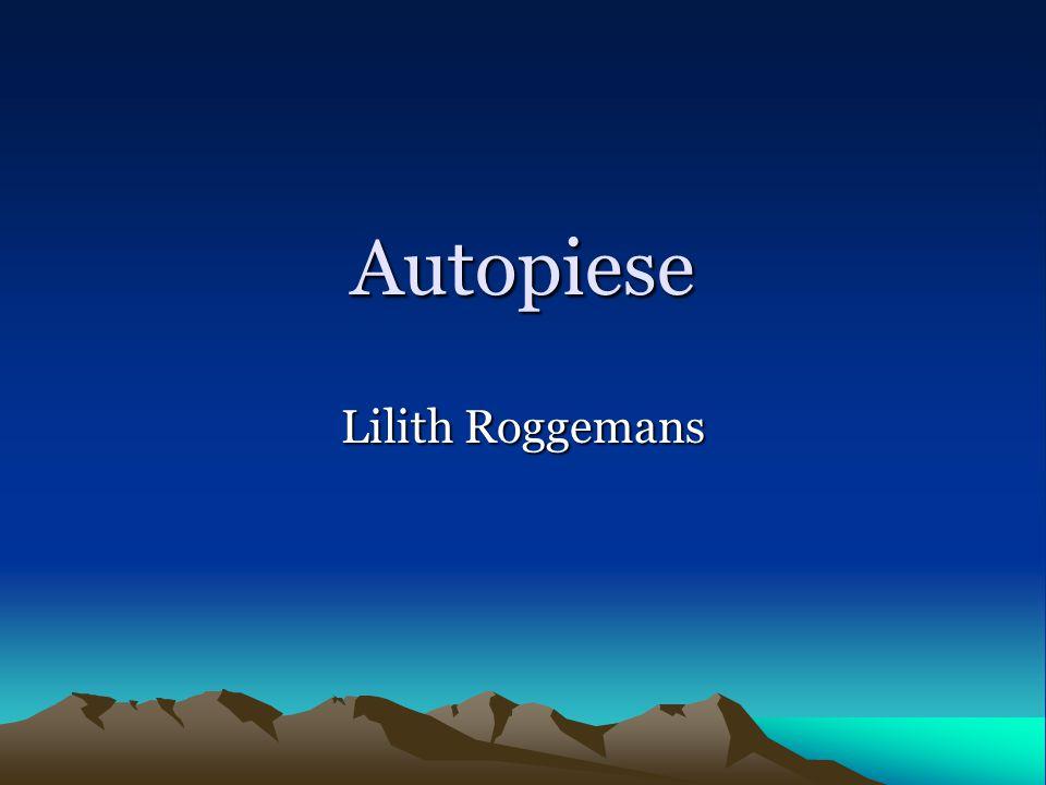 Autopiese Lilith Roggemans