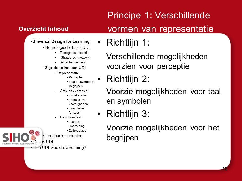 Principe 1: Verschillende vormen van representatie Richtlijn 1: