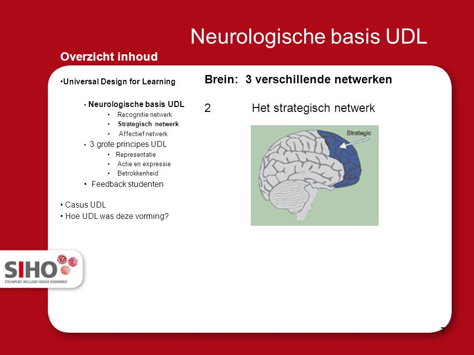 Neurologische basis UDL