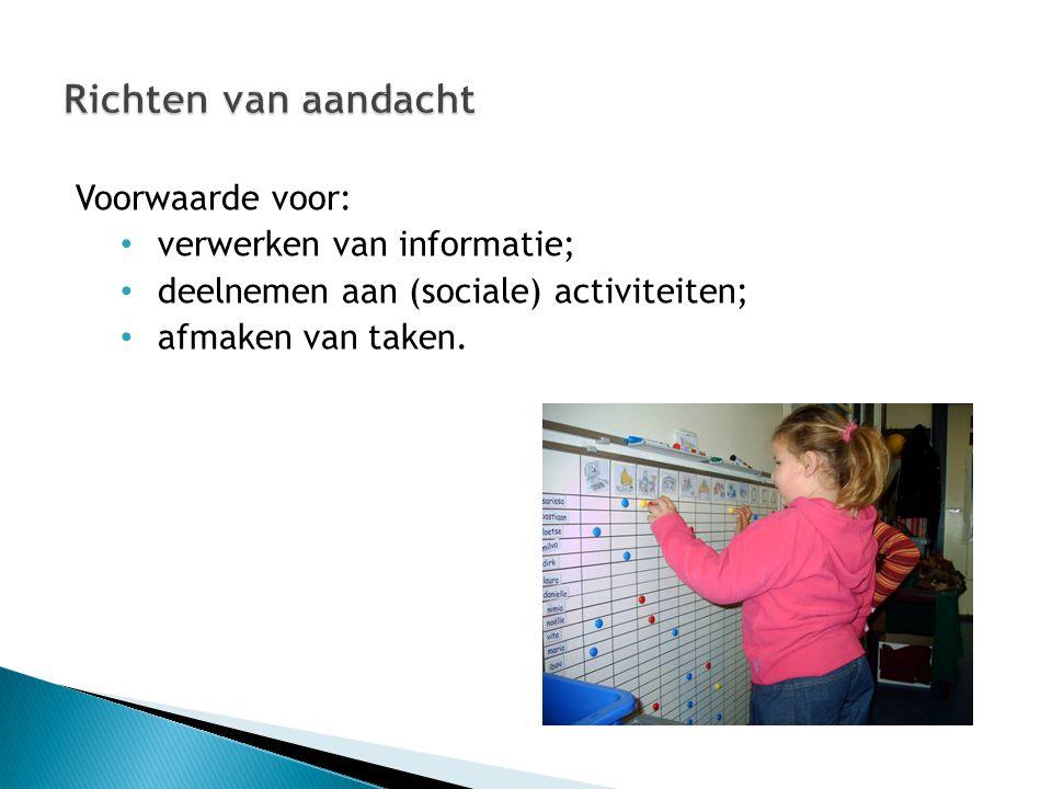 Richten van aandacht Voorwaarde voor: verwerken van informatie;