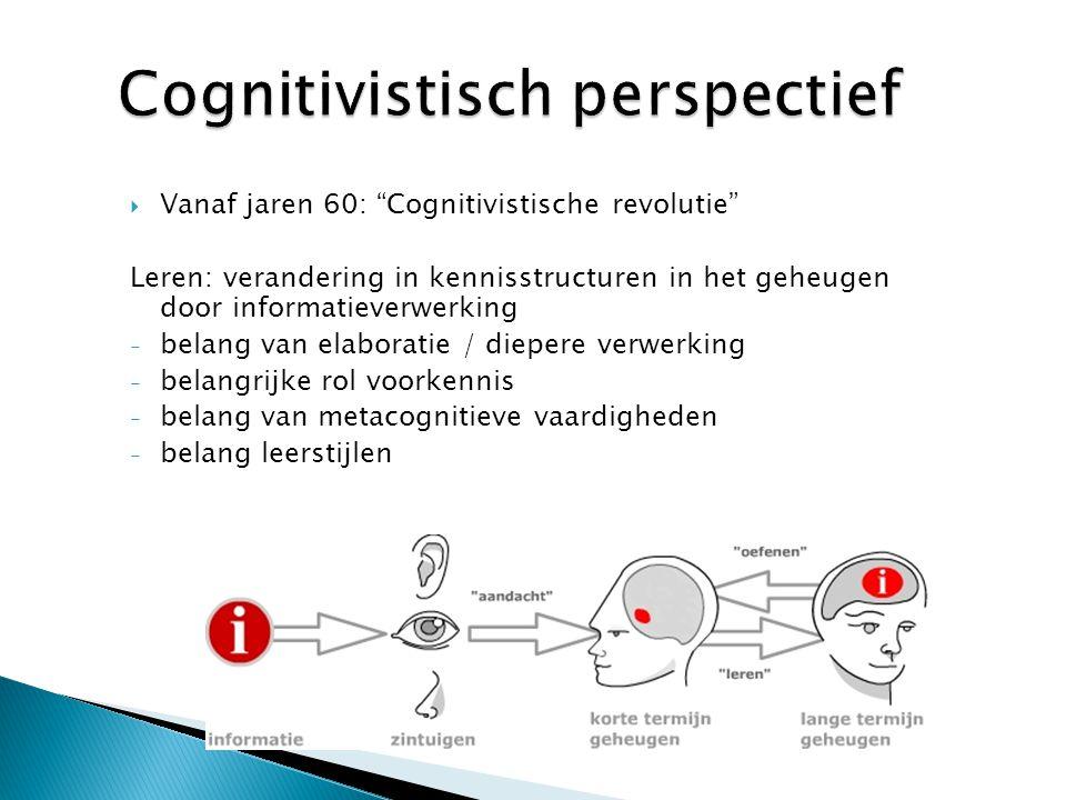 Cognitivistisch perspectief
