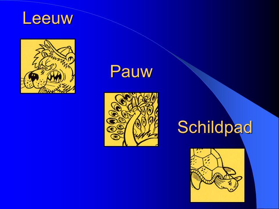 Leeuw Pauw Schildpad