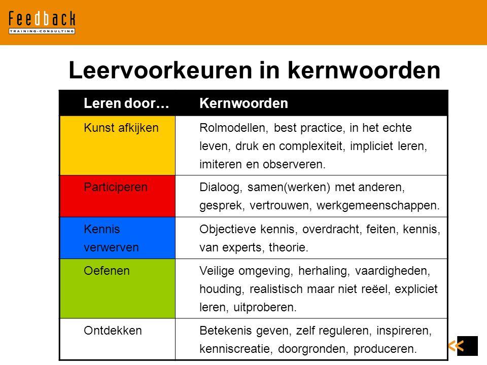 Leervoorkeuren in kernwoorden
