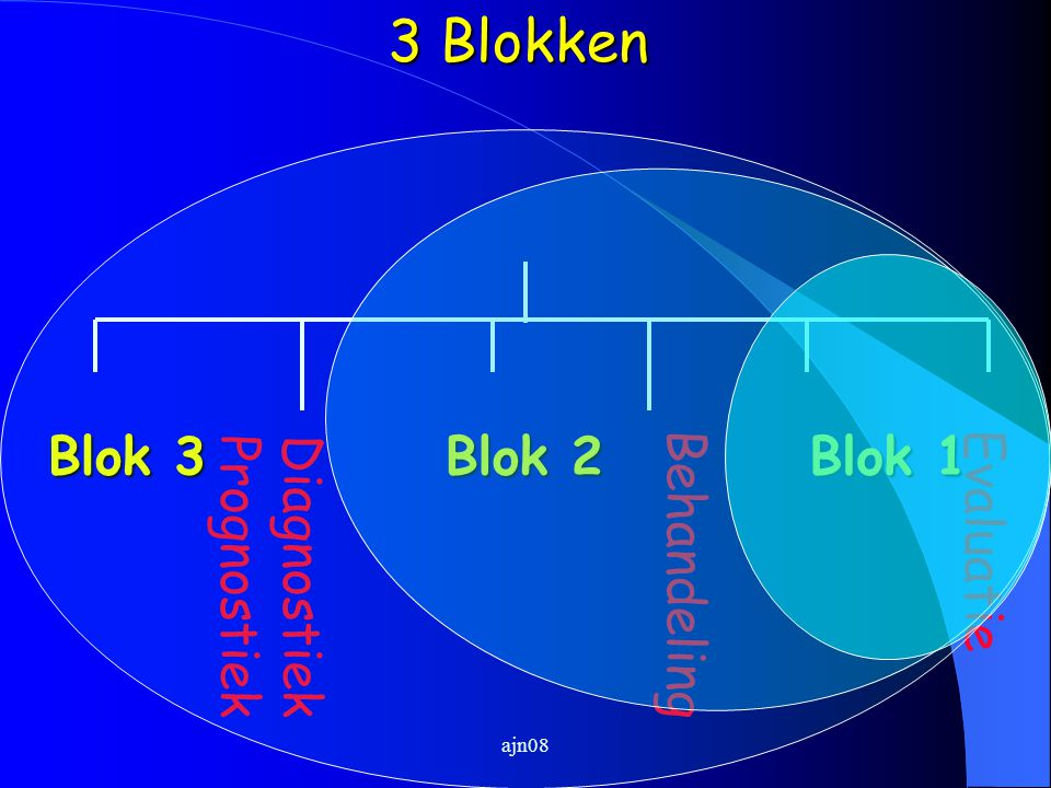 3 Blokken Blok 3 Blok 2 Blok 1 Evaluatie Diagnostiek Prognostiek