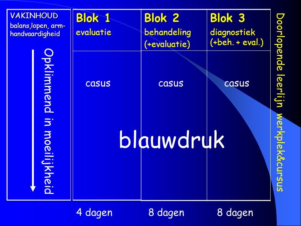 blauwdruk Blok 1 Blok 2 Blok 3 Opklimmend in moeilijkheid casus casus