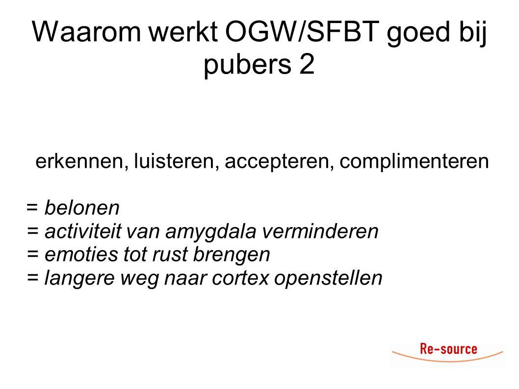 Waarom werkt OGW/SFBT goed bij pubers 2