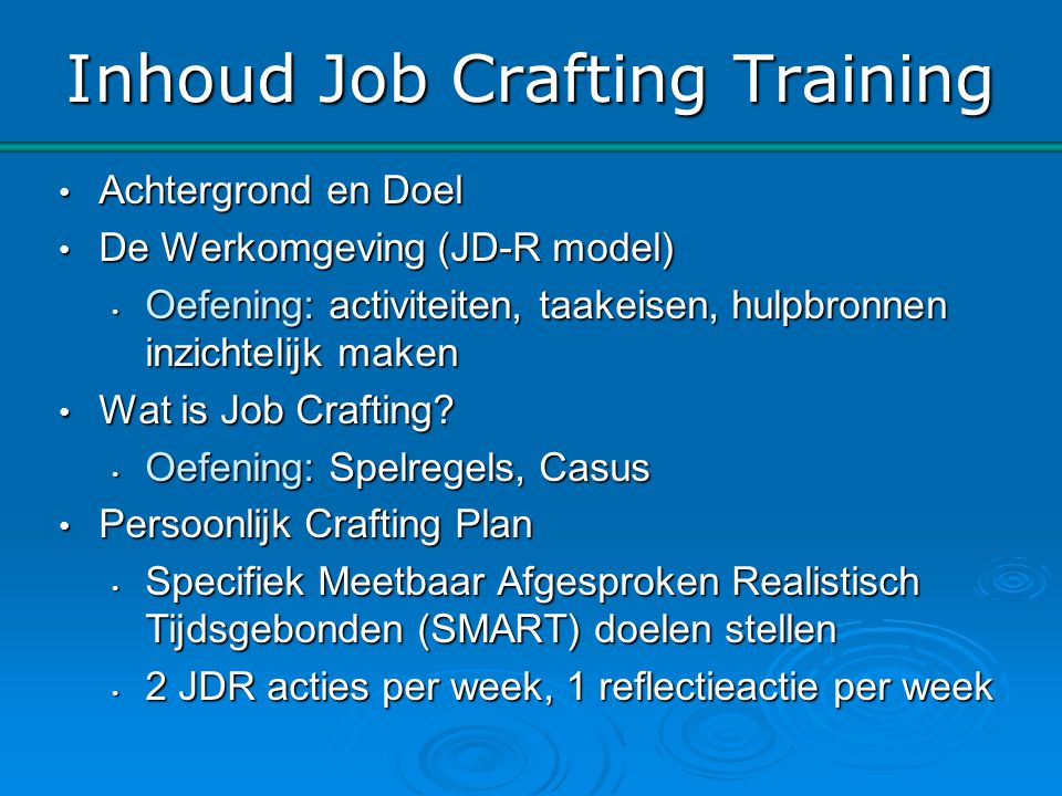 Inhoud Job Crafting Training