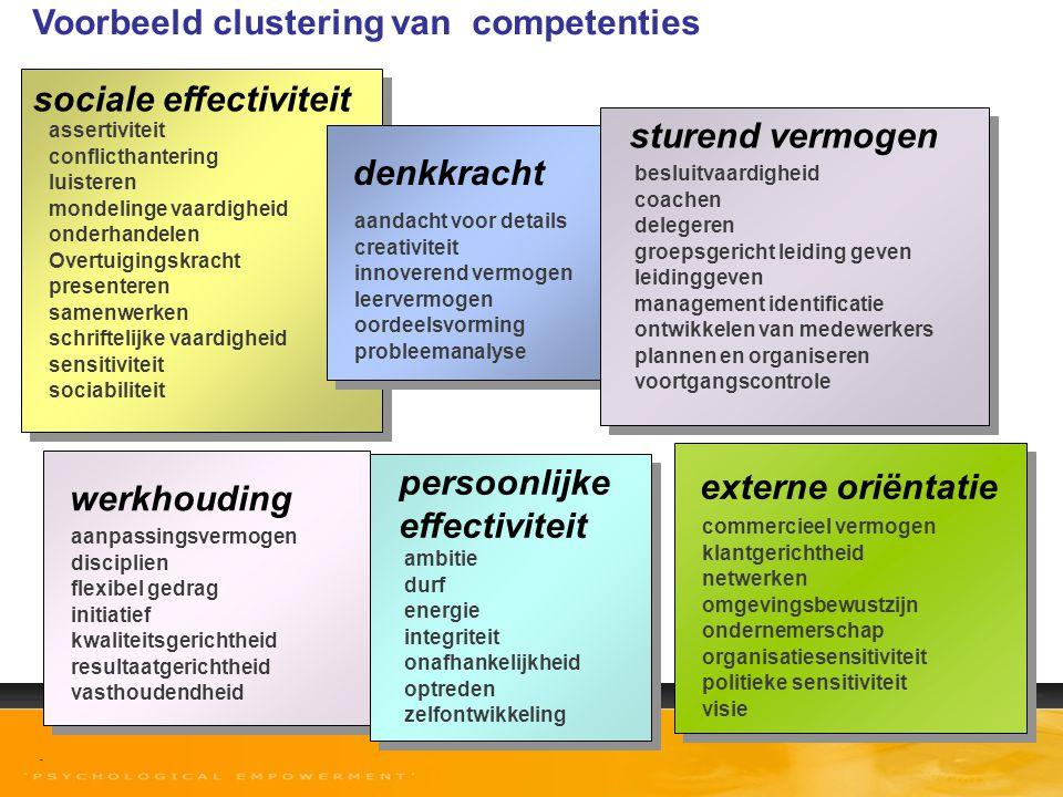 Voorbeeld clustering van competenties