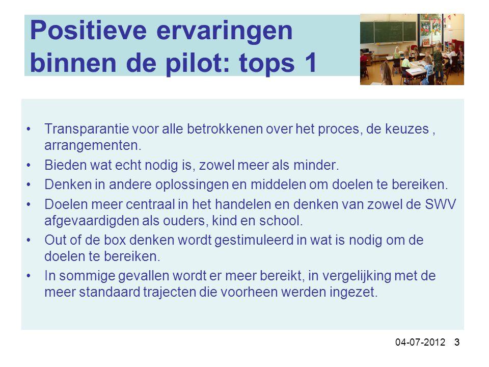 Positieve ervaringen binnen de pilot: tops 1