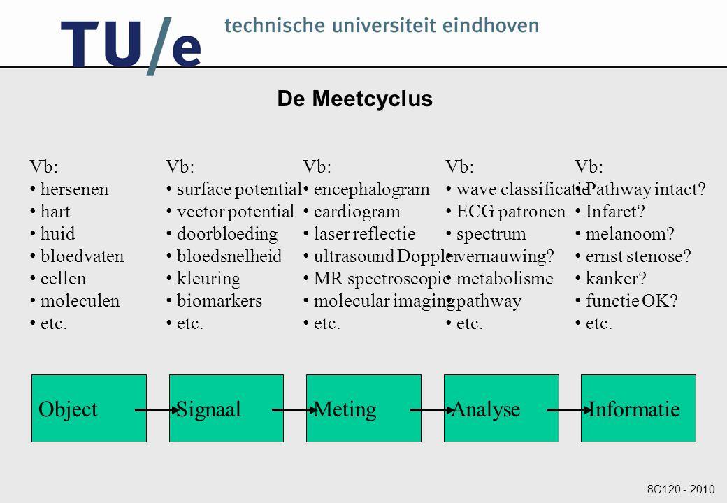 De Meetcyclus Object Signaal Meting Analyse Informatie Vb: hersenen