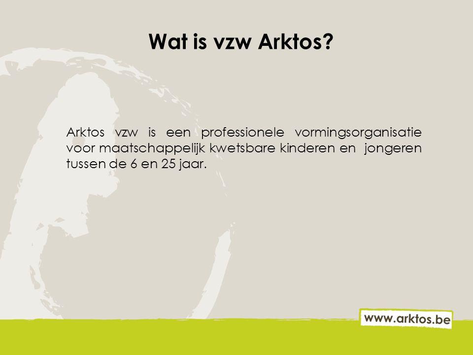 Wat is vzw Arktos.
