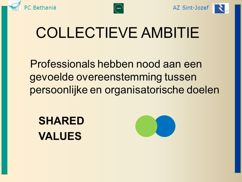 COLLECTIEVE AMBITIE SHARED VALUES