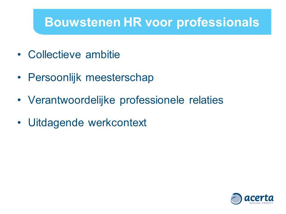 Bouwstenen HR voor professionals