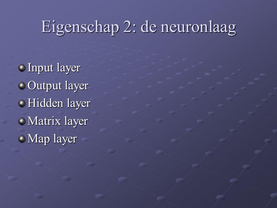 Eigenschap 2: de neuronlaag